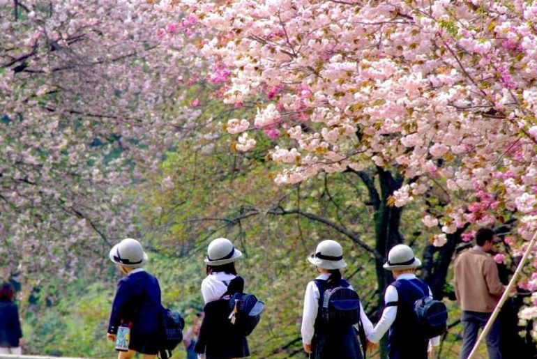 Shinjuku Gyoen is one of Tokyo's largest and most popular parks. Located just a ...