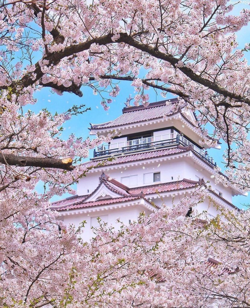 It's time to start planning where to be this spring! We recommend Tsuruga Castle...