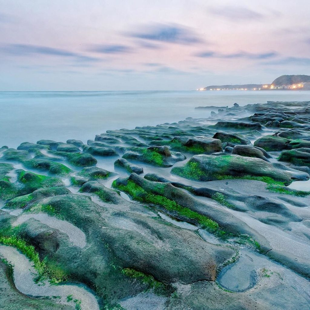 ⠀ Algae covers the rocks of this fantastic Laomei Green Reef in Taiwan. There is...