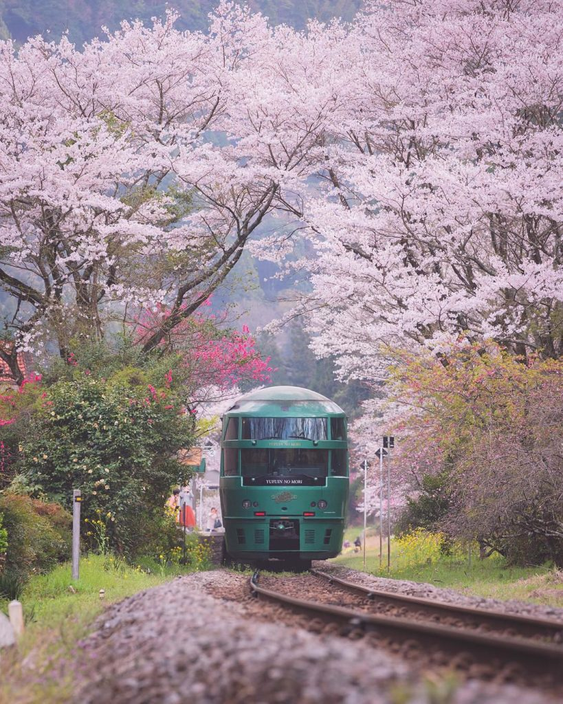 Have you seen a more beautiful train station? If you're in Kyushu down south, ch...