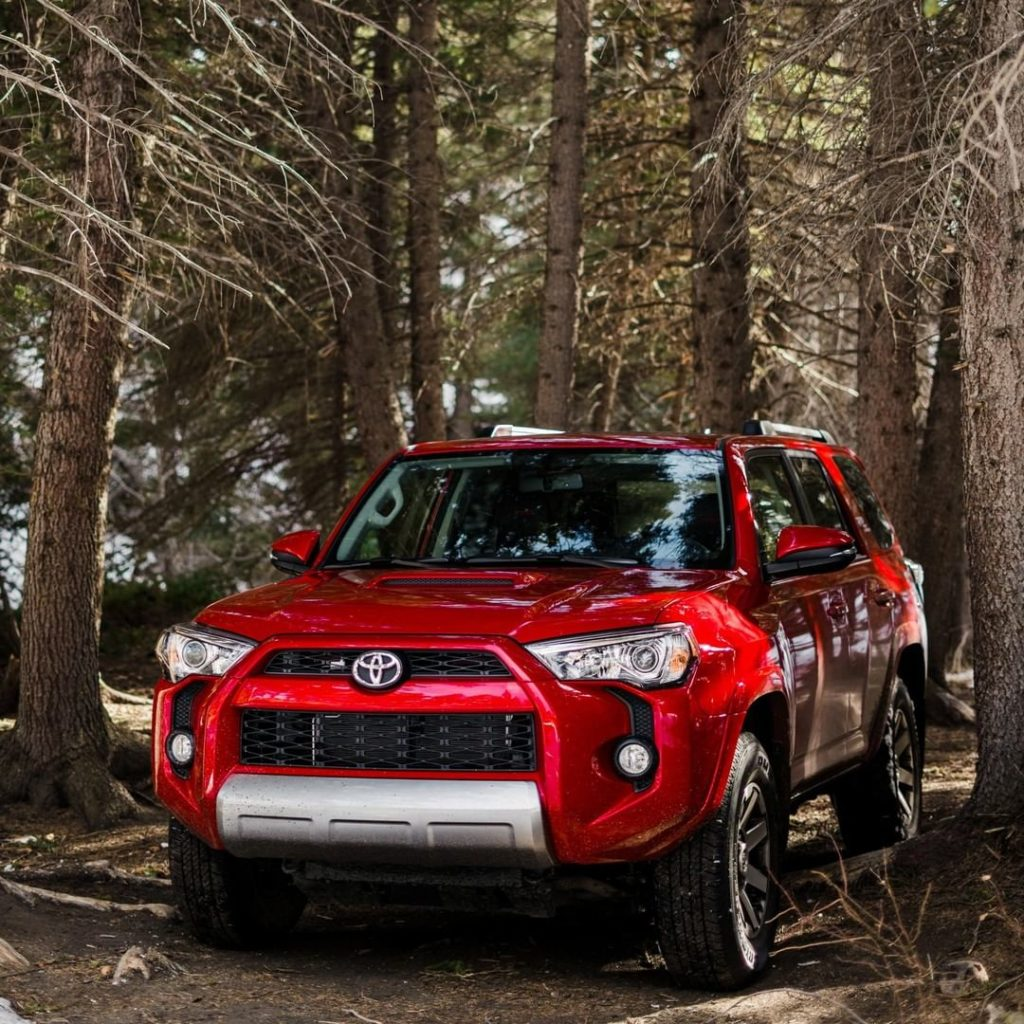 Be one with nature. #4Runner #LetsGoPlaces...