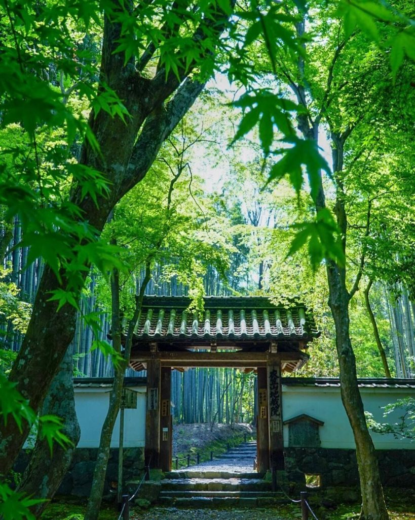 This Saturday in Japan is Greenery Day, a national holiday which centers around ...