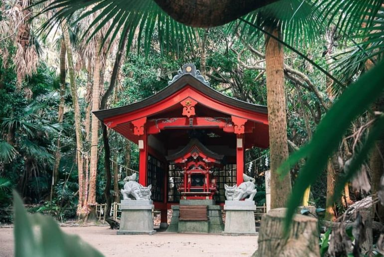 Peek-a-boo!  @julianjowise captured this shot at Aoshima Shrine in Miyazaki Pref...