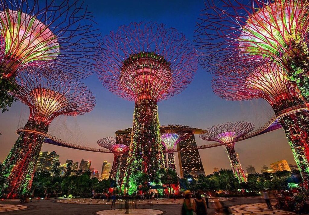 . Walking in the beautiful and futuristic Supertree Grove in Singapore is like b...