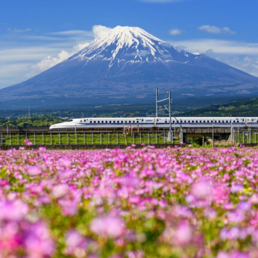 Hop on the bullet train and head out on an adventure!  Follow @visitjapanjp for ...