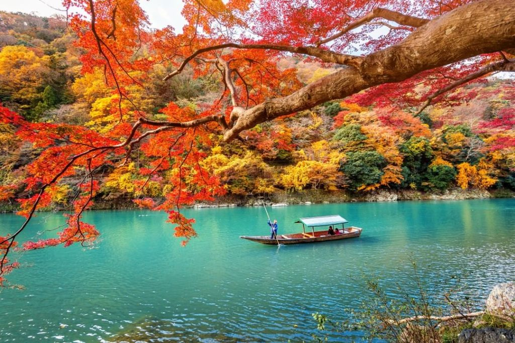 Fall boat cruises on the Hozugawa River are a great way to see the nature near A...