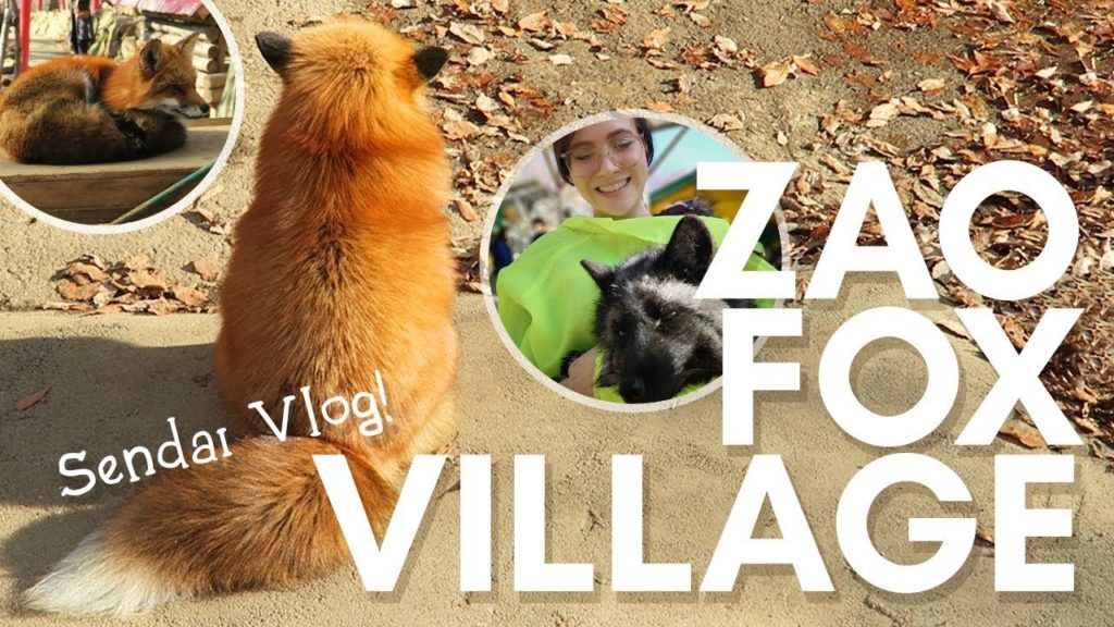 JAPAN VLOG: Arriving to Sendai and ZAO FOX VILLAGE!