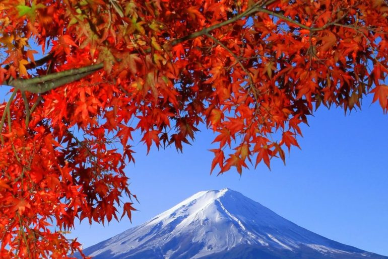 Lake Kawaguchiko is the most easily accessible of the Fuji Five Lakes with train...