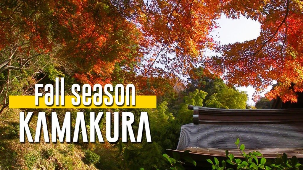 Fall Season in KAMAKURA