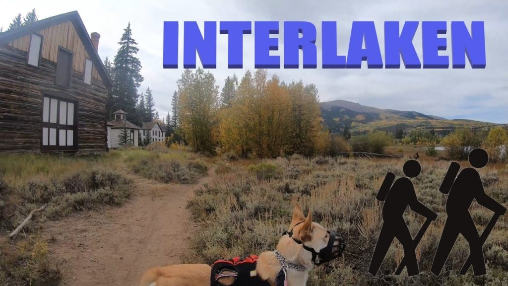 Interlaken an abandoned resort at Twin lakes Colorado hiking with a Belgian Malinois husky mix