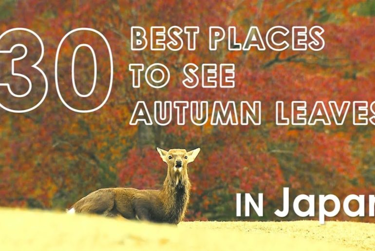 30 Best places to see autumn leaves in Japan 2019