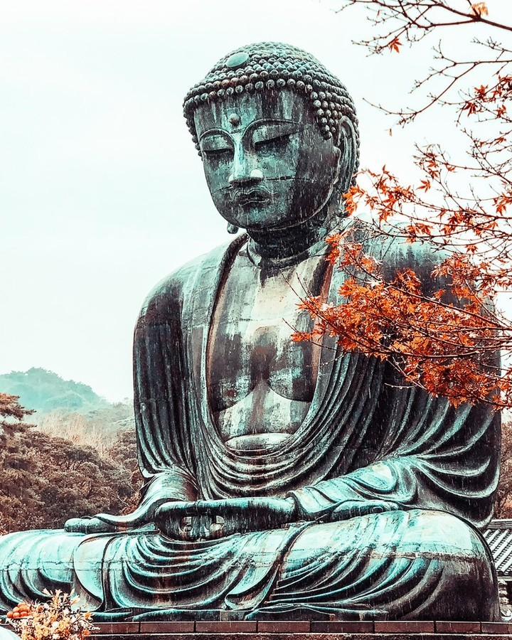 We like big Buddhas and we cannot lie!  Kamakura's iconic Great Buddha statue wa...
