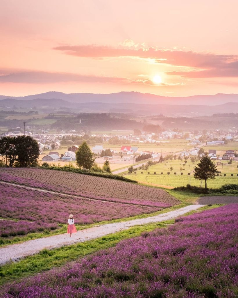 It's competition time! Uncover fascinating Furano, in the centre of Hokkaido, kn...