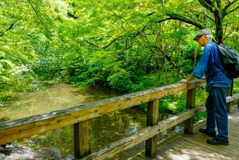What does a day in Oita look like? How about taking in the sights of Lake Kinrin...