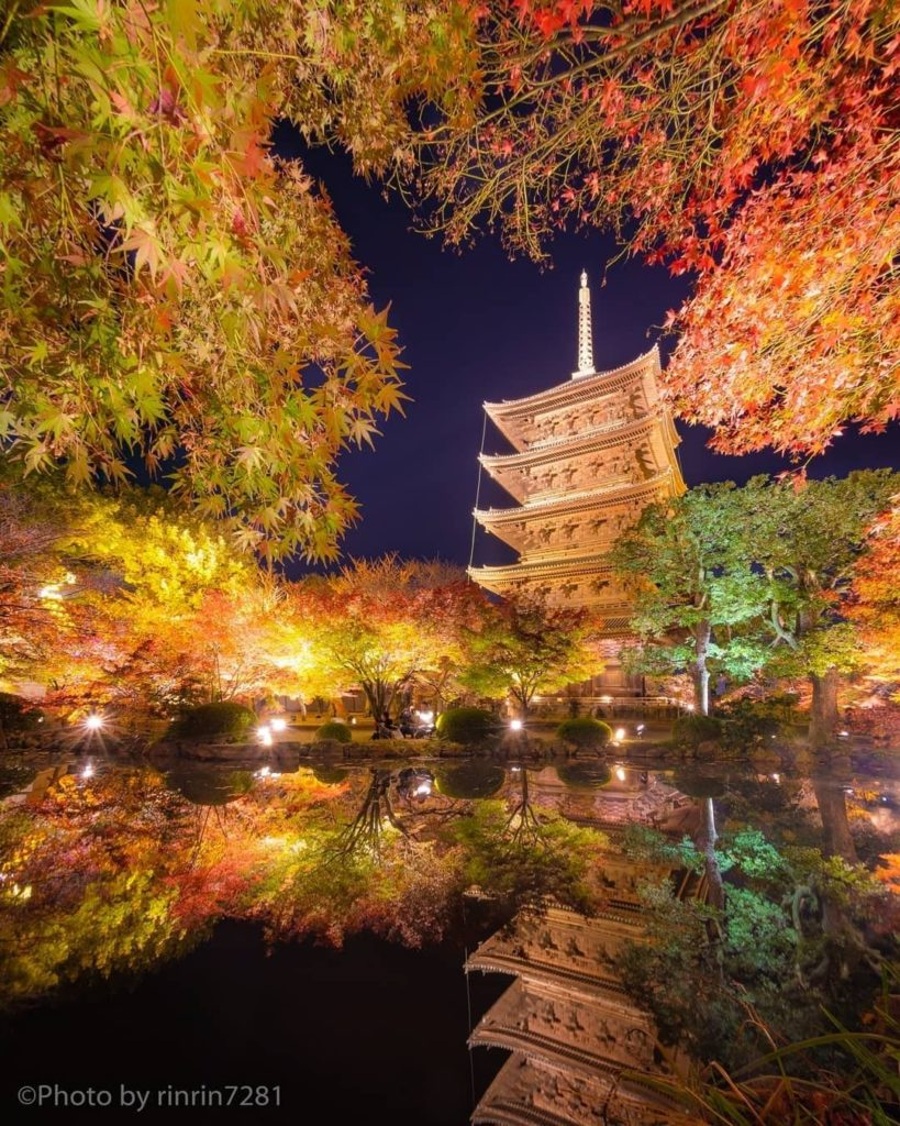 Toji Temple in Kyoto is home to Japan's tallest pagoda!  Photographer @rinrin728...