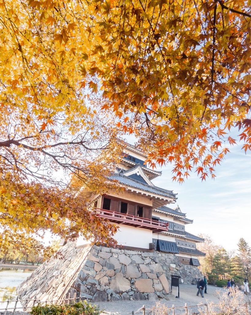 . Matsumoto Castle standing proudly among the autumn leaves. #UncommonOctober . ...