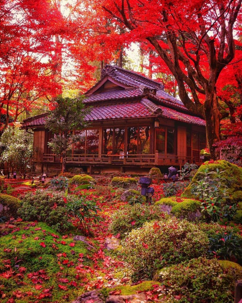 We're seeing a lot more red popping up in Japan lately, and we're not mad about ...