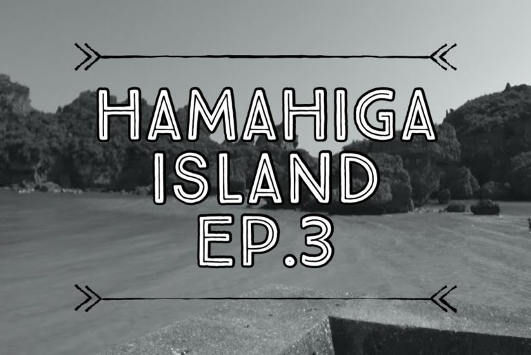 What to Do in Okinawa? HamaHiga Island