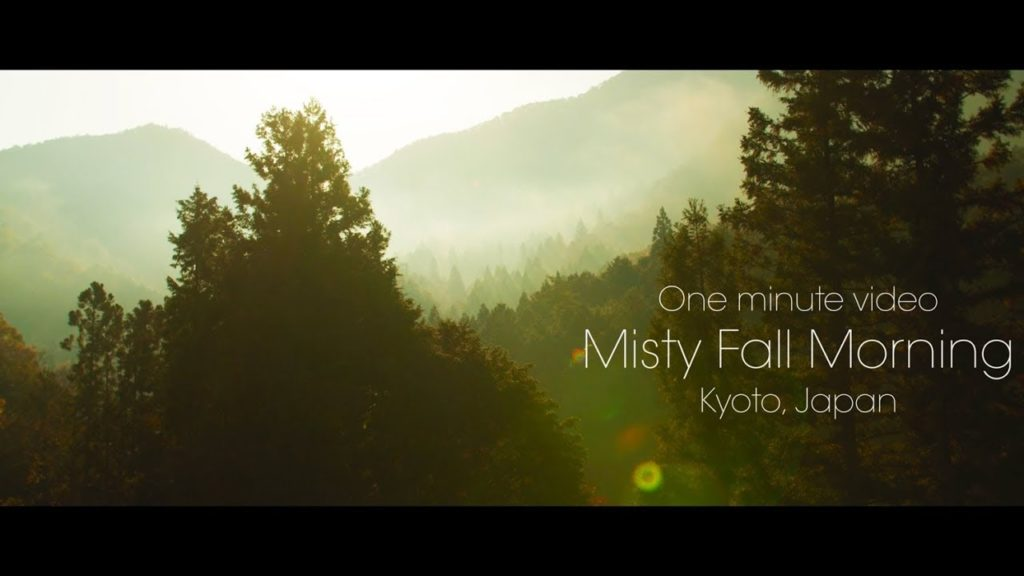 One minute video : Misty fall morning , Kyoto Japan