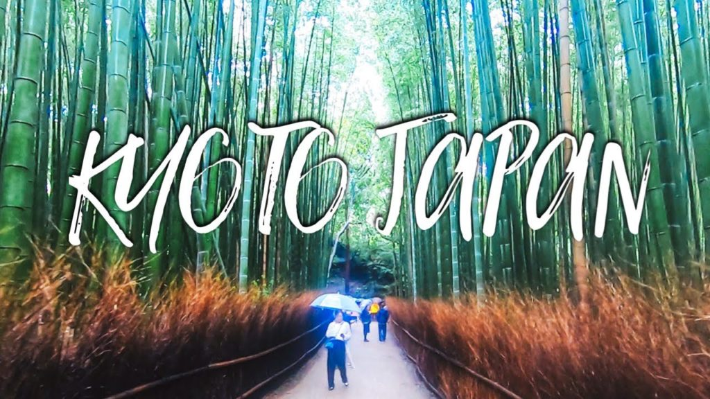 What to Do in Kyoto Japan | Bamboo Forest