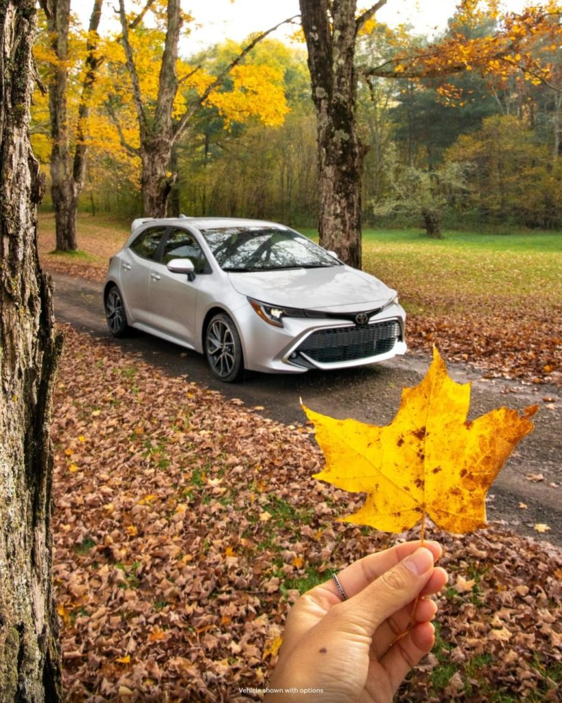 Take some time to enjoy the colors of fall. #Corolla Hatchback #LetsGoPlaces...