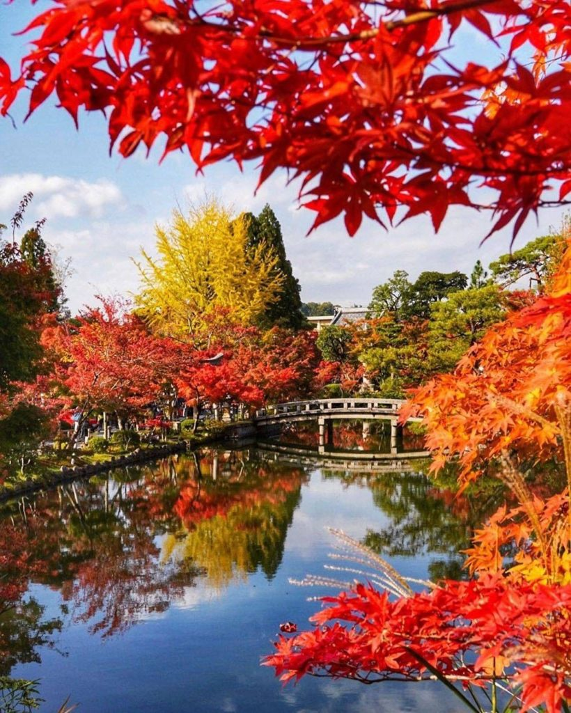 Team Spring  or Team Autumn ? The colors at Kyoto's Eikando Temple have us leani...