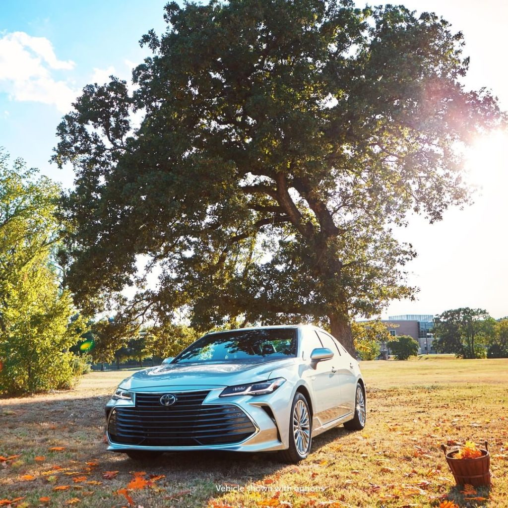 Fall never looked so good! #Avalon #Hybrid #LetsGoPlaces...