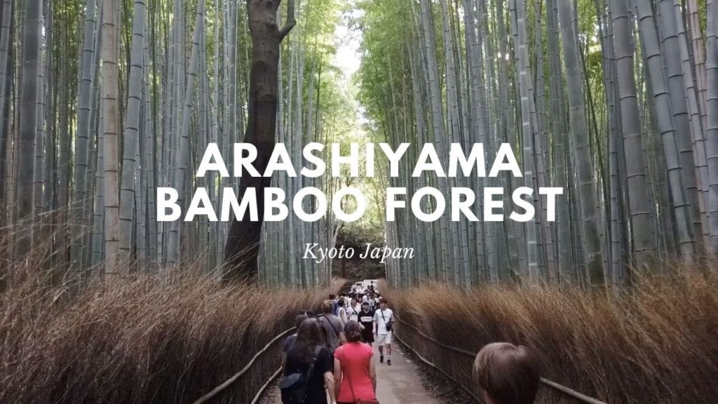 Arashiyama Bamboo Forest | Walk with me tour | Kyoto Japan