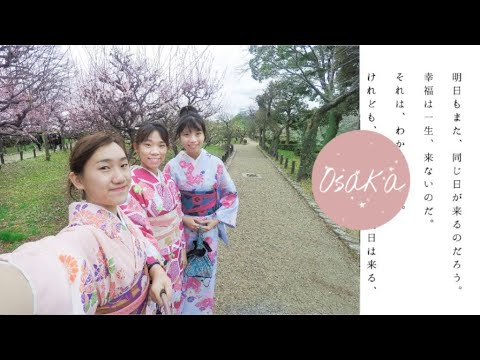 🇯🇵Osaka | Places We Went II | Kuromon Market, Fushimi Inari, Kiyomizu-dera Temple | 仨人日本大阪之旅