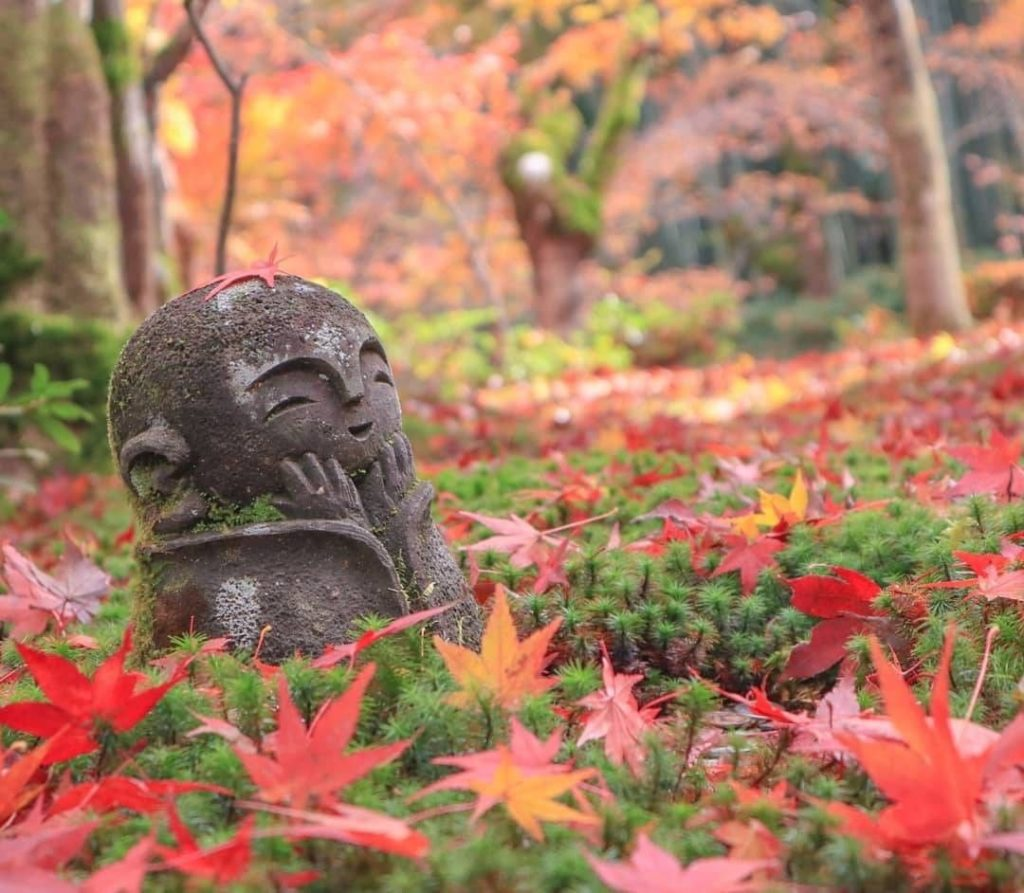 Enkoji Temple in Kyoto is known for its stunning fall foliage, beautiful gardens...